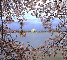 The Jefferson Memorial by Matsumoto