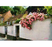 Beguinage Flowers - Lier - Belgium Photographic Print