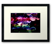Blooms & Blossoms. Cherry Cocktail. Framed Print