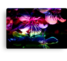 Blooms & Blossoms. Cherry Cocktail. Canvas Print