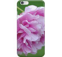 Flower Beauty - 9 iPhone Case/Skin