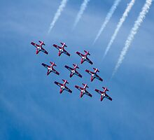 Snowbirds by Sean McConnery