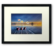 Summer morning magic Framed Print