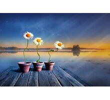 Summer morning magic Photographic Print