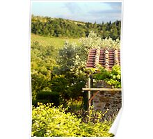 Tuscan Vineyards and Terra Cotta Poster
