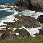 Crashing waves by Steve plowman