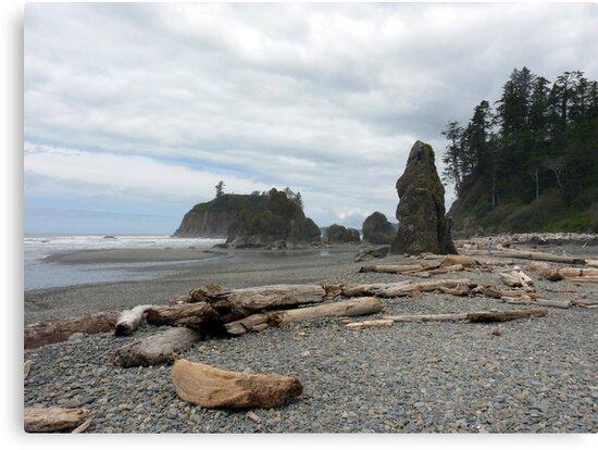Ruby Beach - Washington by Lucinda Walter