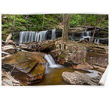 Delaware Falls In Ganoga Glen Poster