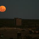 Mooning an Outhouse by Deon de Waal