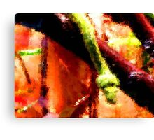 Boa Abstract Canvas Print
