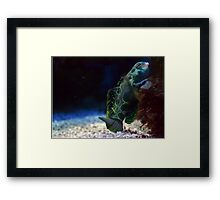 Glow in the Dark Framed Print
