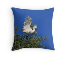 """Look Out Down Below"" Throw Pillow"