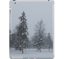 A Cold December Morning - Snowstorm in the Park iPad Case/Skin