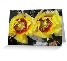 Bee Bonnet Prickly Pear Blossoms Greeting Card