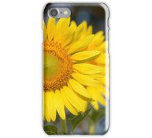 Shining in the Sun iPhone Case/Skin