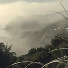 Mist over Opua, New Zealand. by Roy  Massicks