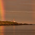 Cape Forchu Double Rainbow at Sunset by Debbie  Roberts