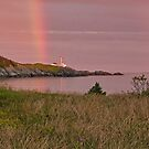 Cape Forchu Rainbow, with Irises by Debbie  Roberts