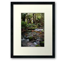 """Paradise"" Framed Print"