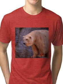 Debbie-The Oldest Polar Bear Tri-blend T-Shirt