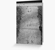 Ghost Footprints--Black and White Greeting Card