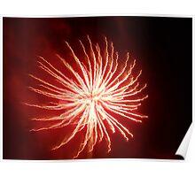 Fireworks 7-4-10 (II) Poster