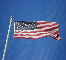 American Flag by Mike Edmondson