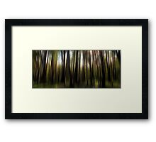 It's all too Beautiful Framed Print