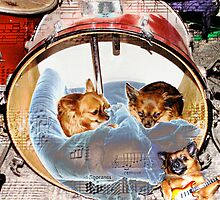 Little Drummer Dogs by Bonnie Aungle