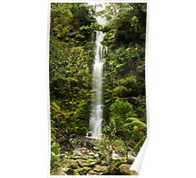 ERSKINE FALLS IN THE OTWAY RANGES (2) Poster