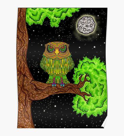 Venus Owl Poster