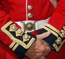 British Coldstream Guards by Daniel B McNeill