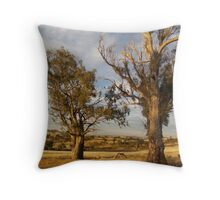 Dry and Beautiful in Canberra - Australia Throw Pillow
