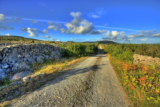 Old Burren Road by John Quinn