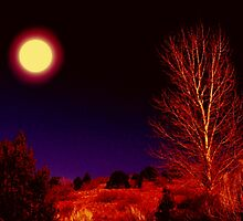 A Full Moon Goodnight by myrbpix
