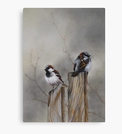 """""""Spuggies on the fence"""" Canvas Print"""