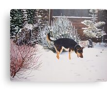 Winter snow scene with cute black and tan dog  Canvas Print