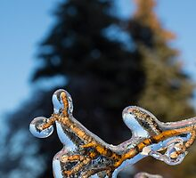 Mother Nature's Christmas Decorations - Encapsulated Branch by Georgia Mizuleva