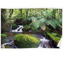 Taggerty River Marysville, Victoria Poster