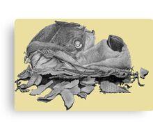 Humorous still life art drawing of dog slipper   Canvas Print