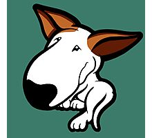 Ginger Ears English Bull Terrier Puppy Photographic Print