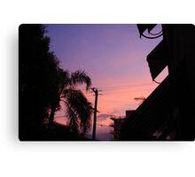 Pinks & Purples Canvas Print
