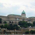 Royal Palace/Castle,capital Budapest World Heritage Site (Europe) by ambrusz