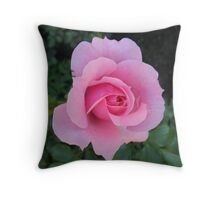 Singled out in Pink Throw Pillow