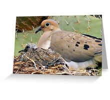 Mourning Doves: Thorn Baby and Proud Mother Greeting Card