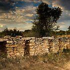 Beehive housings. by Josep M Penalver