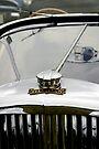 Mystery car (Silurian) by buttonpresser