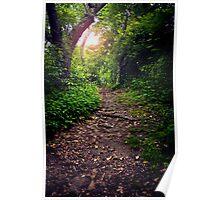 Dirt Path Poster