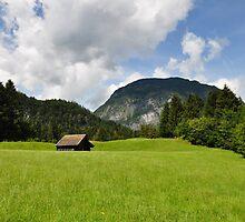 Countryside 06. Germany. by Daidalos
