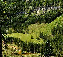 Berchtesgadener Land by Daidalos